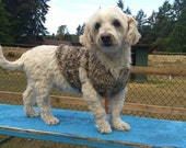 Hand Knit Dog Coat - Handspun from dog fur and wool
