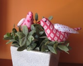 Two Pink Little Birds searching for a new home