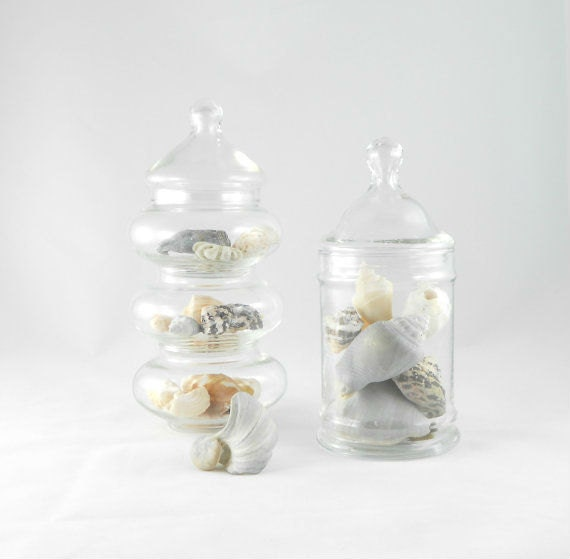 Vintage Apothecary Jars - Candy Buffet Jars