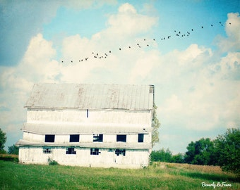 mead barn, landscape, white, farm fine art photography