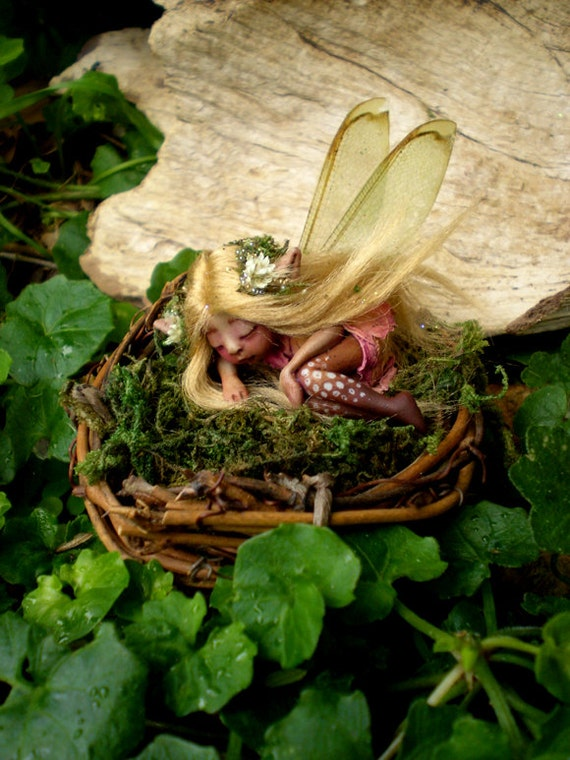 Tiny Woodland Forest Fairy in Birds Nest by Celia Anne Harris OOAK - Made to Order