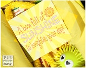 DIY, Sunshine Box Printables - Great for a sick friend - INSTANT DOWNLOAD pdf