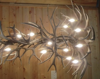 Large Mule Deer Antler Chandelier, great for log home, Proudly made here in the U.S.A