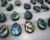 abalone shell flat teardrop bead 14x10mm 15 inch strand