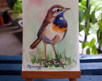 ACEO Limited Edition 1/25-Bluethroat, in watercolor