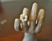 Cream Daisy Filigree Ring
