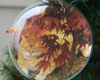 Personalized Christmas Ornaments - Photo Ornaments - Family Photo Gift - Keepsake Gift - Stocking stuffer - 3 & 1/8 Inch Glass Disc