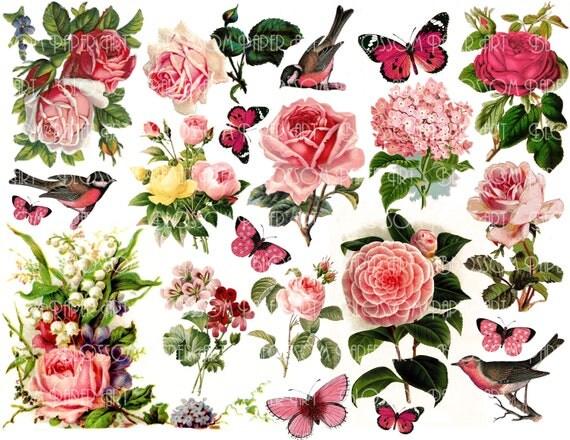 Scrapbooking Pink Flowers Flowers Scrapbooking