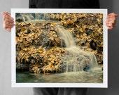 Autumn Waterfall Photograph - 16x20, Fine Art Photograph Woodland, Krushuna Waterfalls, beige autumn leaves