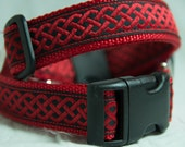Red celtic knot collar on 1 inch dog collar.