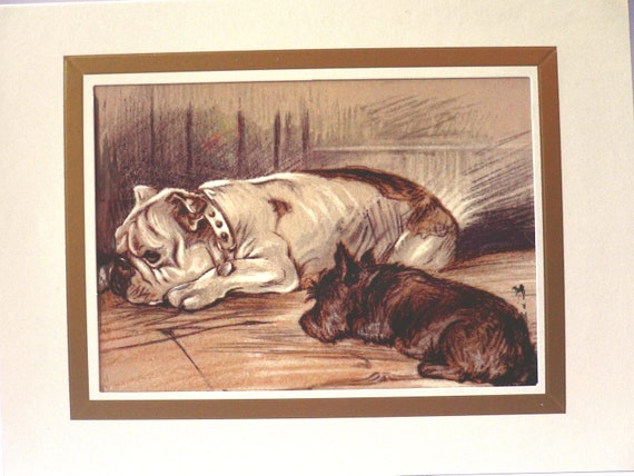 Unique 7 x 5 ins dog blank card illustration of drawing by Mac Lucy Dawson Bulldog Scottish terrier Gift for any dog lover