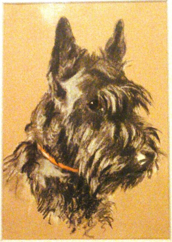 Unique Framed 1939 'Mac' Lucy Dawson Herald Heather Scottish terrier dog plate/print  gift