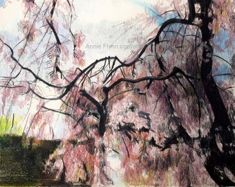 "Archival Print of Original ""Cherry Blossom number 2"""