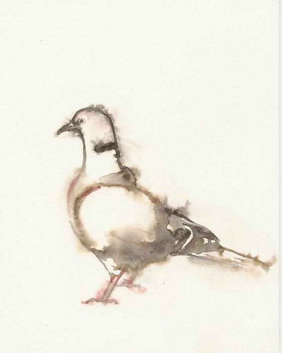 Dove, Original watercolor painting, animal art, pigeon, watercolor painting art.