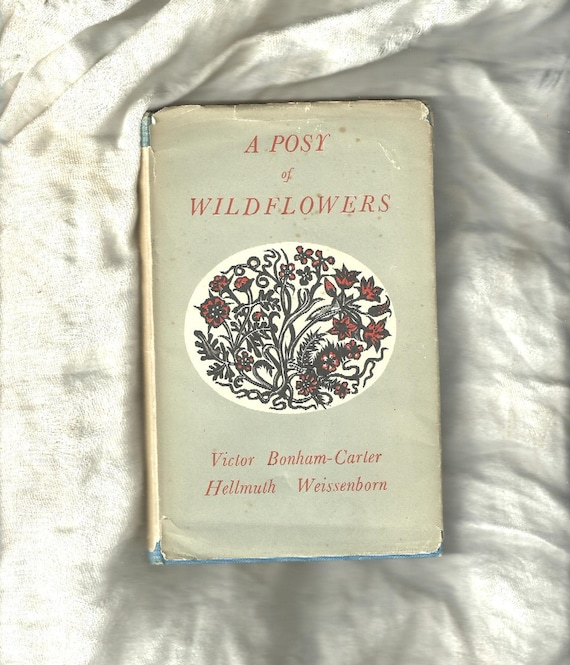 Exquisite Vintage Romance Of Flowers Book - A POSY OF WILDFLOWERS - Wood-Cut Illustrations