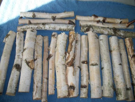 peeling white paper birch branches/ mini logs, native to New Hampshire,