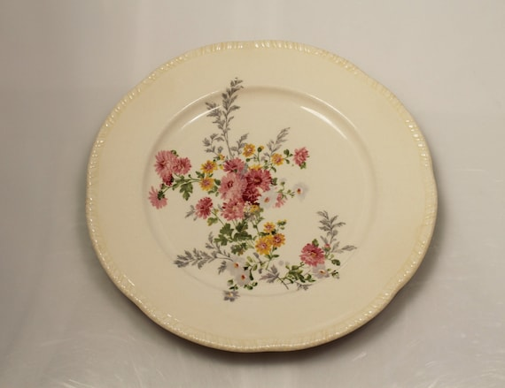 China Dinner Plate - Homer Laughlin R48N8. A43
