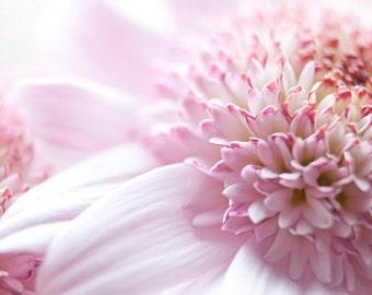 Nursery Art Pastel Flower photograph Instant Download Fine Art Photography pink flower pastel photo print pink wall art
