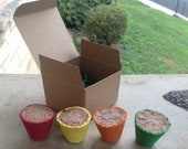 4 Mini Flower Pot Seed Bombs Made of Recycled Paper