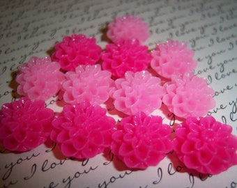 12 Pink Flower Magnet Set