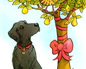 Black labradour and a partrige in a pear tree. Christmas cards. 5 card pack.
