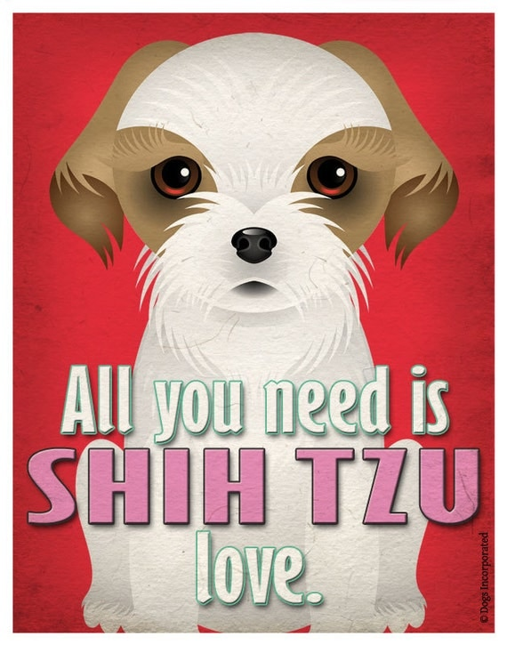 Shih Tzu Art Print - All You Need is Shih Tzu  Love Poster 11x14 - Dogs Incorporated