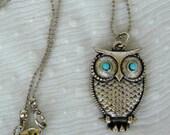 Lovely Little Owl