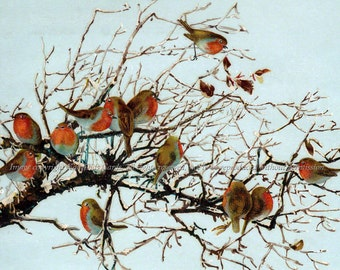 Robins Fabric - Flock of Birds in a Tree Cotton Fabric Block