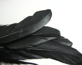 """Black Goose Nagoire Feathers, Loose Feathers / 10 / 4""""-6"""""""