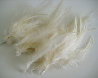 Ivory Hackle Hen Feather Fringe / 20 loose feathers