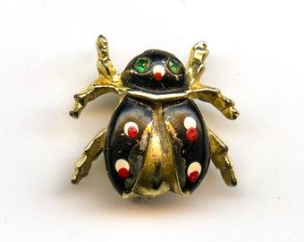 Lady Bug or Beetle Pin