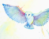 Owl - limited edition signed giclee art print