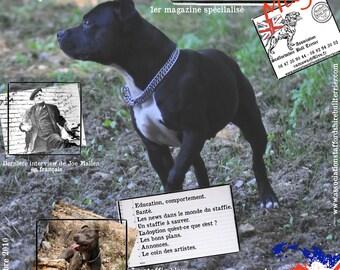Magazine spécialisé Staffordshire Bull Terrier Octobre 2010