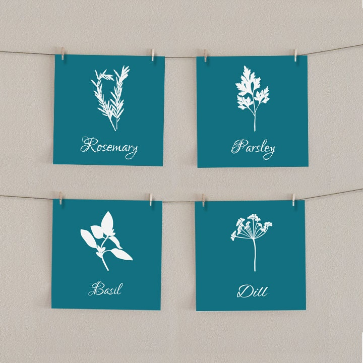 Kitchen Art Print Set Herbs In Teal Parsley By