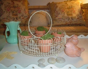 Vintage metal caddy or holder for pots, plants or glasses - shabby perfection