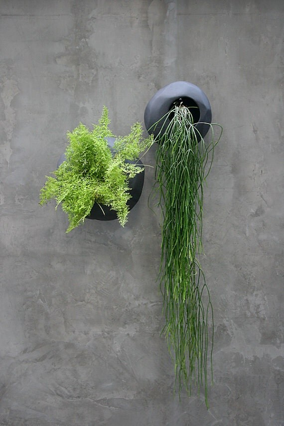 Small Terracotta Wall Planter Black Color
