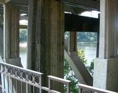 Under Bridge Songs of Selma Park Selma Alabama Photography  5 x 7 Print