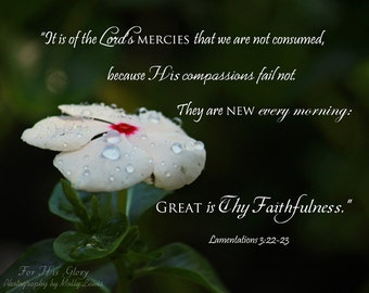 """025 """"It is of the Lord's Mercies..."""""""