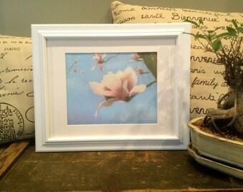 Oil painting of Magnolia Digital Print