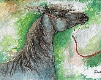 Emon polish arabian horse watercolor painting