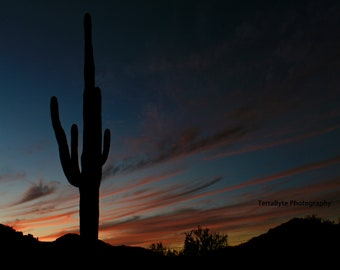Fine Art Photography Home Decor Saguaro Desert Sunset Tucson Arizona
