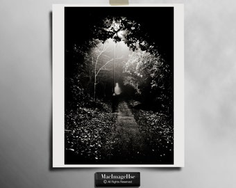 10x8 Black & White Picture of a atmopheric path.