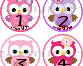 Owl Baby girl monthly stickers, Baby girl month stickers,  Girl monthly stickers, Baby girl stickers, Month stickers girl, Baby age stickers