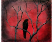 Red metallic, crow picture, Gothic decor, Gothic crow, crimson, blackbird, gothic art - Red Vision - gothicrow