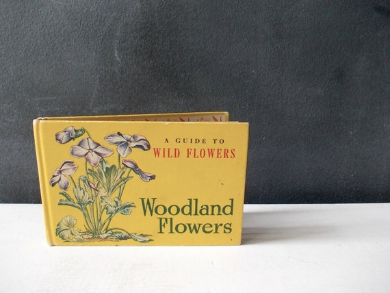1945 Book Guide To Wild Flowers, Woodland : Tiny Yellow Illustrated Book