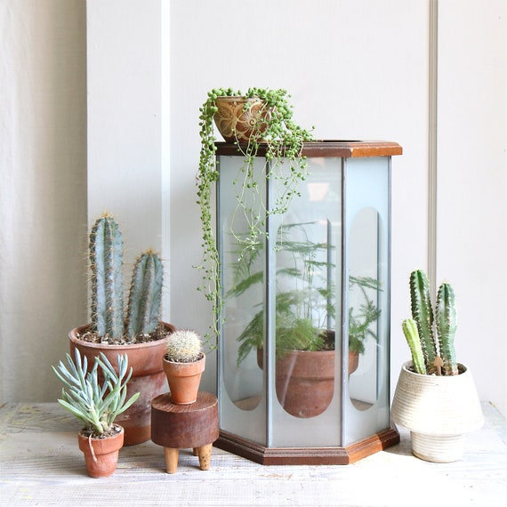 Large Vintage Etched Glass Geometric Terrarium