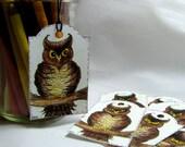 Owl Tags, Owl Gift Tags, Set of 16, Folk Art