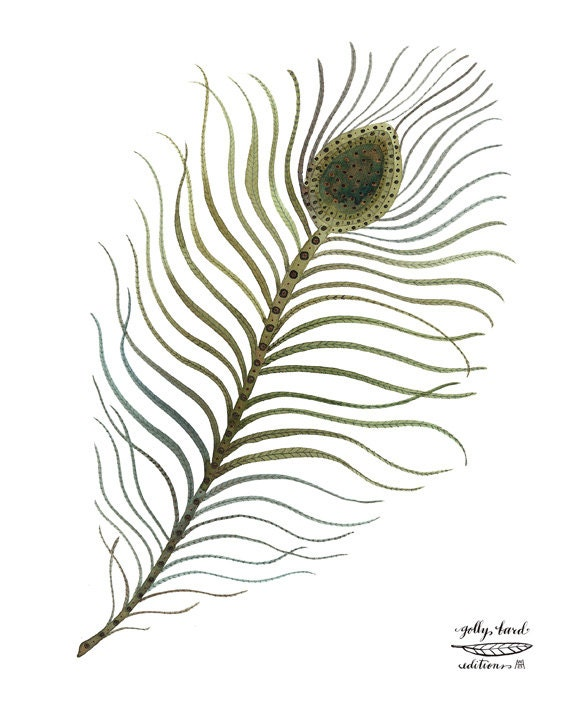 peacock plume print, feather art, bird feathers, bird art, watercolor reproduction giclee print