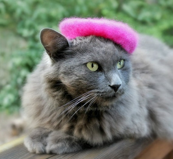 Raspberry Beret - Cat Beret - Pink Flambe Wool Felted Beret - French Cat Beret
