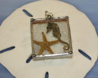 Real Seahorse and Starfish Glass Shadowbox Charm Pendant